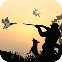 Codes for Duck Hunting Sport 3D Hack