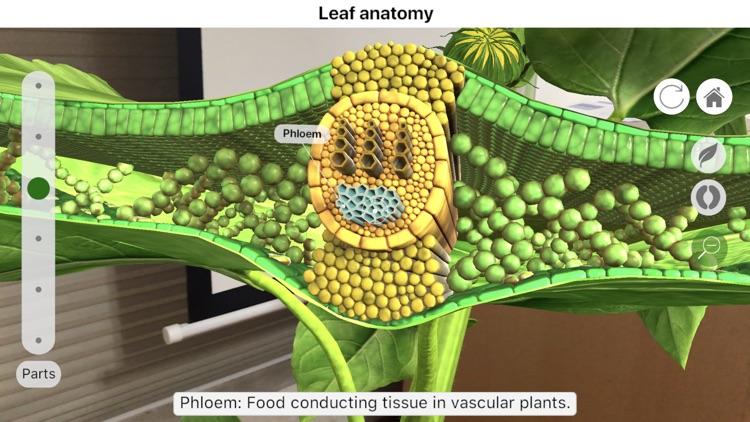 Plantale screenshot-3