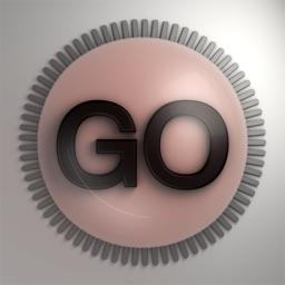 Virb Go360