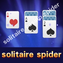 The Spider Solitaire