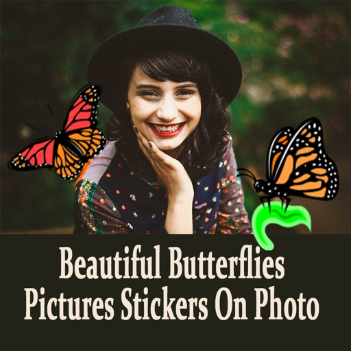 Beautiful Butterflies Pictures Stickers On Photo