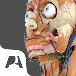 Pocket Anatomy. app