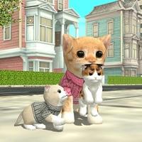 Katzen Simulator