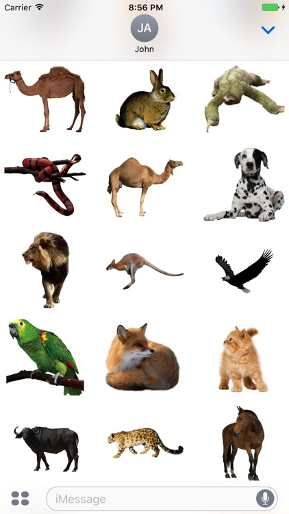 Animals Stickers!
