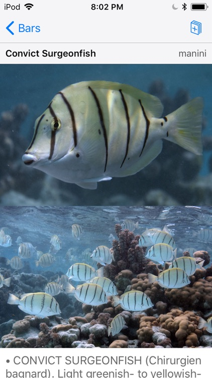 Tetiaroa Fish Guide screenshot-7