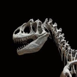 Lapworth Allosaurus Application