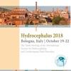 Hydrocephalus Meeting 2018 G-mapps.com
