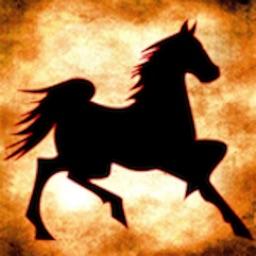Horse - Racing Calculator