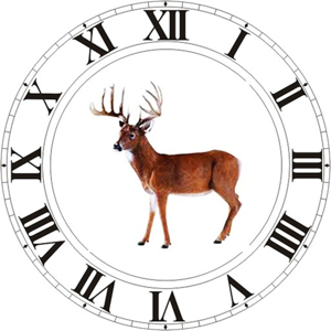 Best Hunting Times ios app