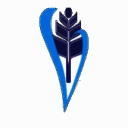 Vidya Council