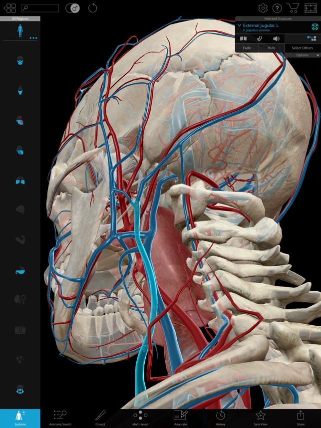 Human Anatomy Atlas 2018 on the App Store