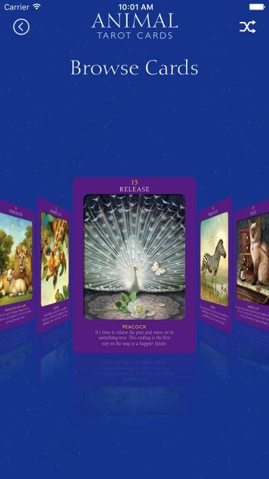 Animal Tarot Cards screenshot 2