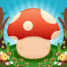 Activities of Mushroom Fantasy