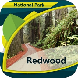Redwood In- National Park