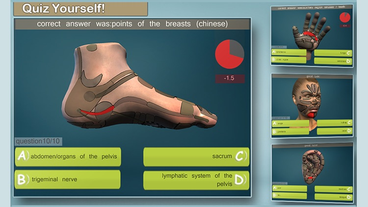 Total Reflexology-3D screenshot-2