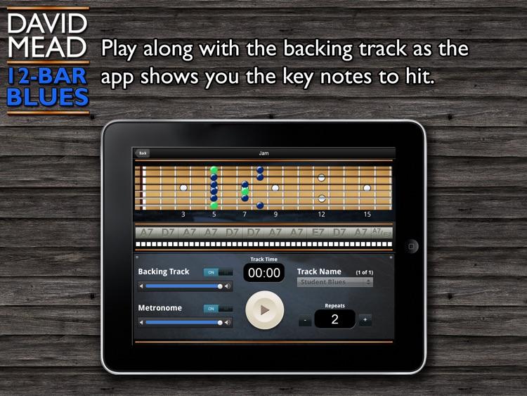 David Mead Twelve Bar Blues screenshot-3