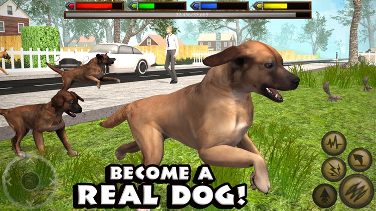 Ultimate Dog Simulator screenshot-0
