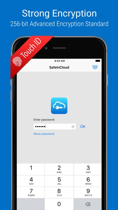 SafeInCloud Pro iPhone