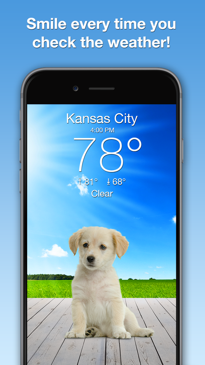 Weather Puppy: Forecast + Dogs Screenshot