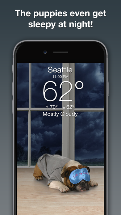 download Weather Puppy: Forecast & Dogs apps 1