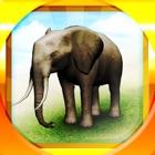 REAL ANIMALS HD (Full) icon