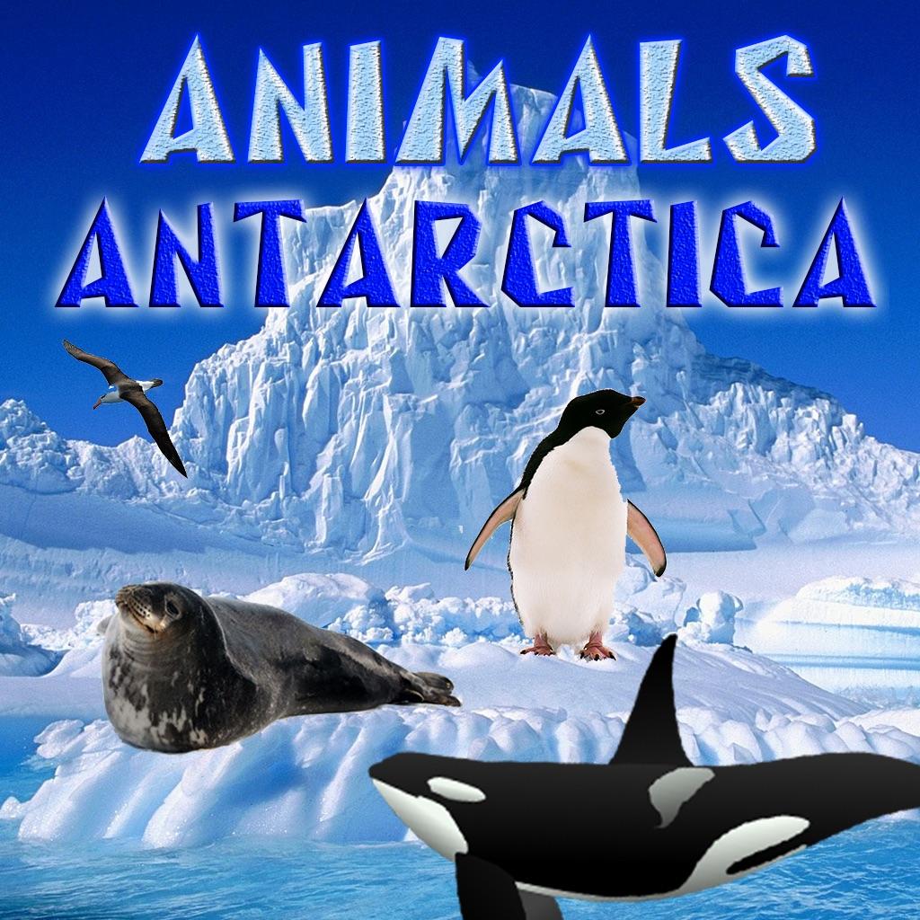 Animals Antarctica hack