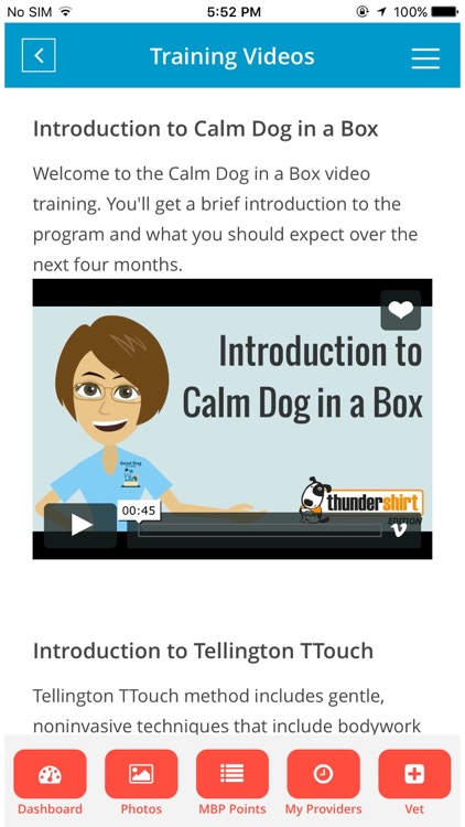 Hydrant-Pet Care,Training,Fun