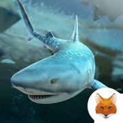 海洋鲨鱼冰雪酷跑