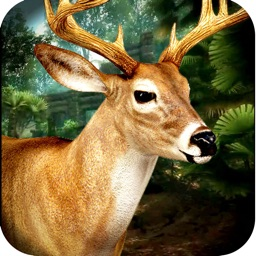 3D Wild Animal Ultimate Hunting