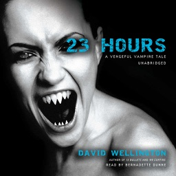 23 Hours (by David Wellington)