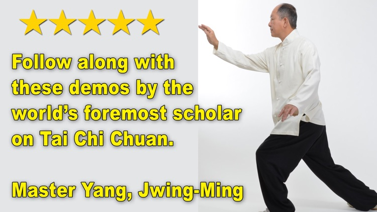 Tai Chi 13 Postures screenshot-3