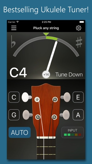 Precision Ukulele Tuner With Chords Metronome On The App Store