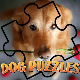 jigsaw collection dog brain puzzles games