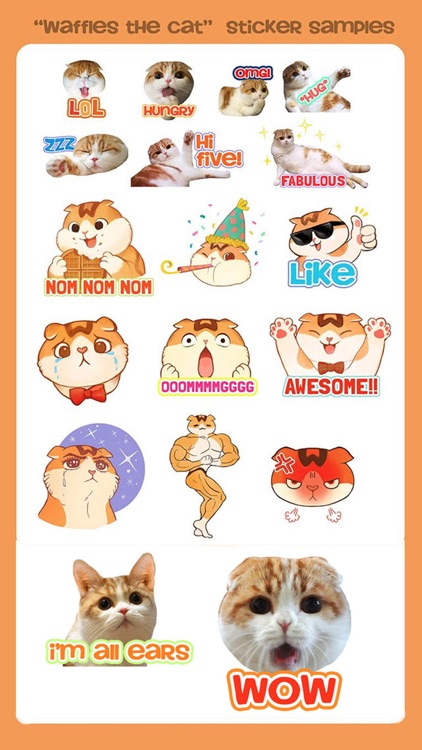 Waffles the Cat: Stickers
