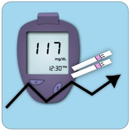 Blood Sugar Log