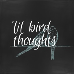 'lil bird thought stickers