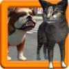 点击获取Real Cat Simulator