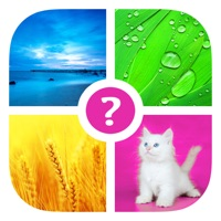 Codes for Words & Pics ~ Free Photo Quiz. What's the word? Hack