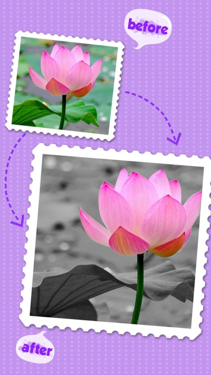 Color Editor - Photo Recolor & Background Eraser screenshot-3