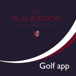 The Blackwood Golf Centre - Buggy