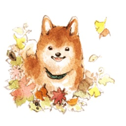 Watercolor Shibainu Dog Sticker