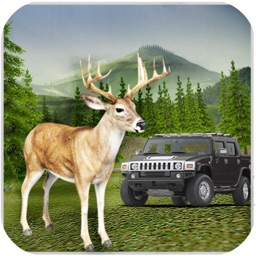 Deer Wild Hunter 3D - Sniper Shoot Animal