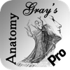 Gray's Anatomy HD for Students - Le Duy
