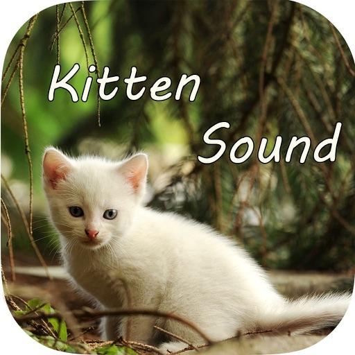 Kitten Sounds – Cat Meow Sound iOS App