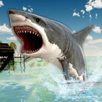 Codes for Hunter Shark Simulator: Sea Attack 3D Hack