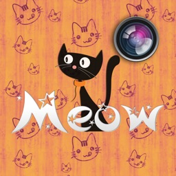 Meow Pics – Photo frames & stickers for cats