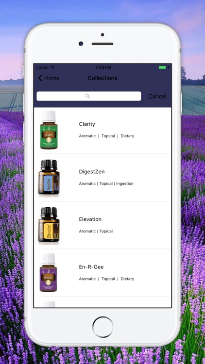 Essential Oils Guide Modern Aromatherapy for EO