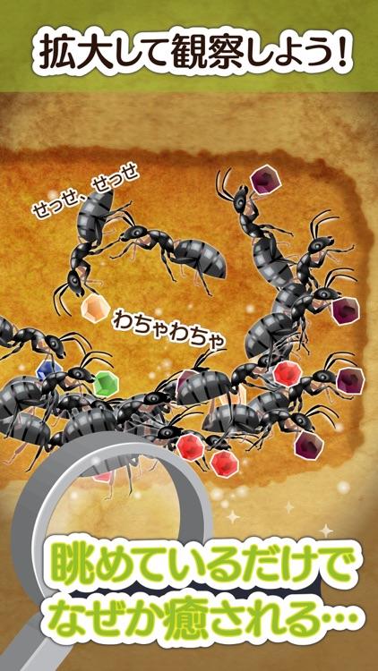 アリの巣コロニー - 暇つぶし観察放置育成ゲーム screenshot-3