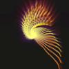 Joachim Wolffram - Light Creations アートワーク