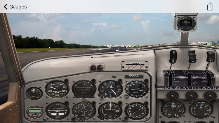 FSX Animated Cockpits by PositionGames
